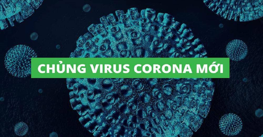 Cập nhật tình hình dịch Corona tại Việt Nam